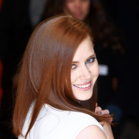 Amy Adams of American Hustle and Lois Lane fame