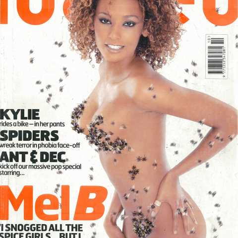 Mel B covers her vitals in bees for Loaded