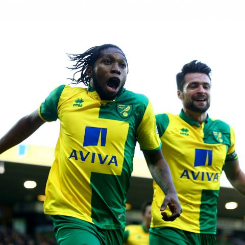 Norwich Striker Dieumerci Mbokani celebrates for Norwich