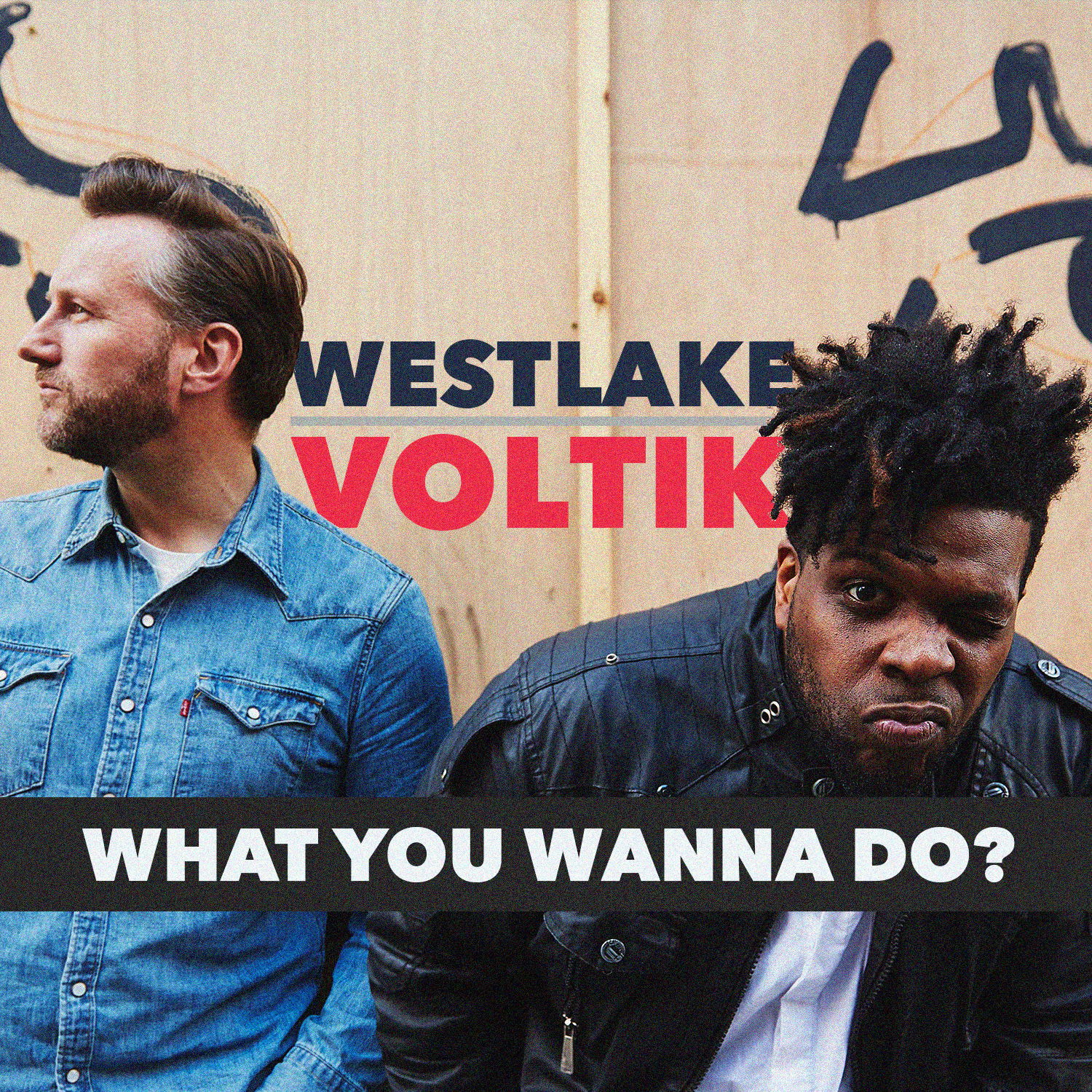Voltik & Westlake - Artwork