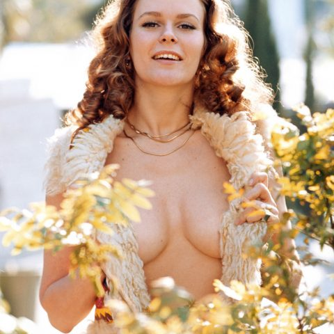 Playboy Playmates of the 1970s Susan Miller