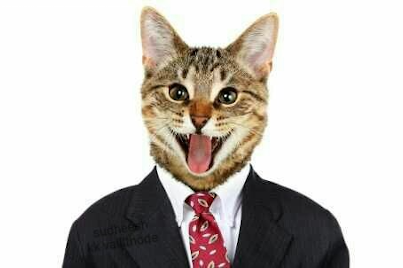 A picture of a cat in a suit.