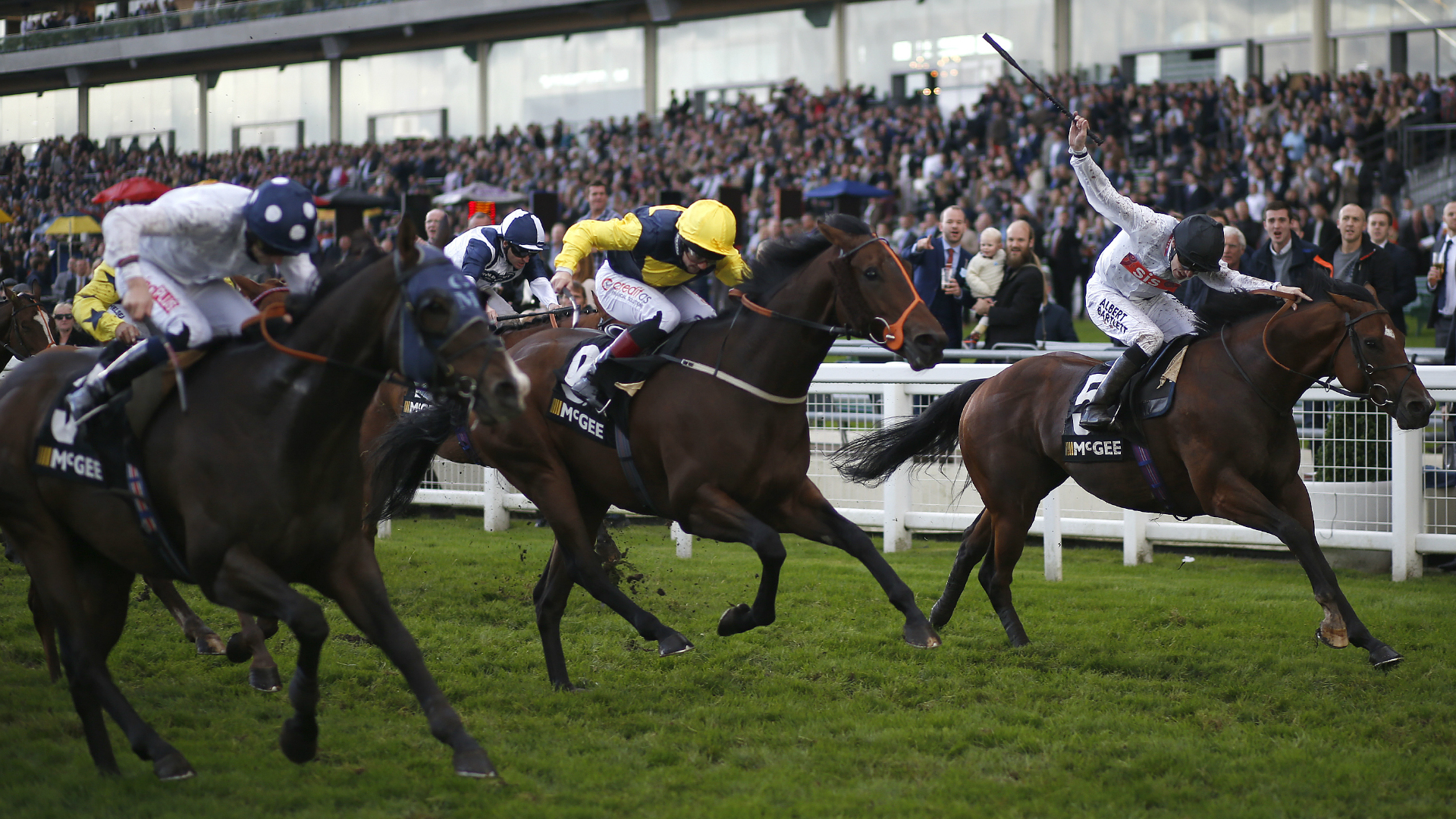 A still image of racing from Royal Ascot.