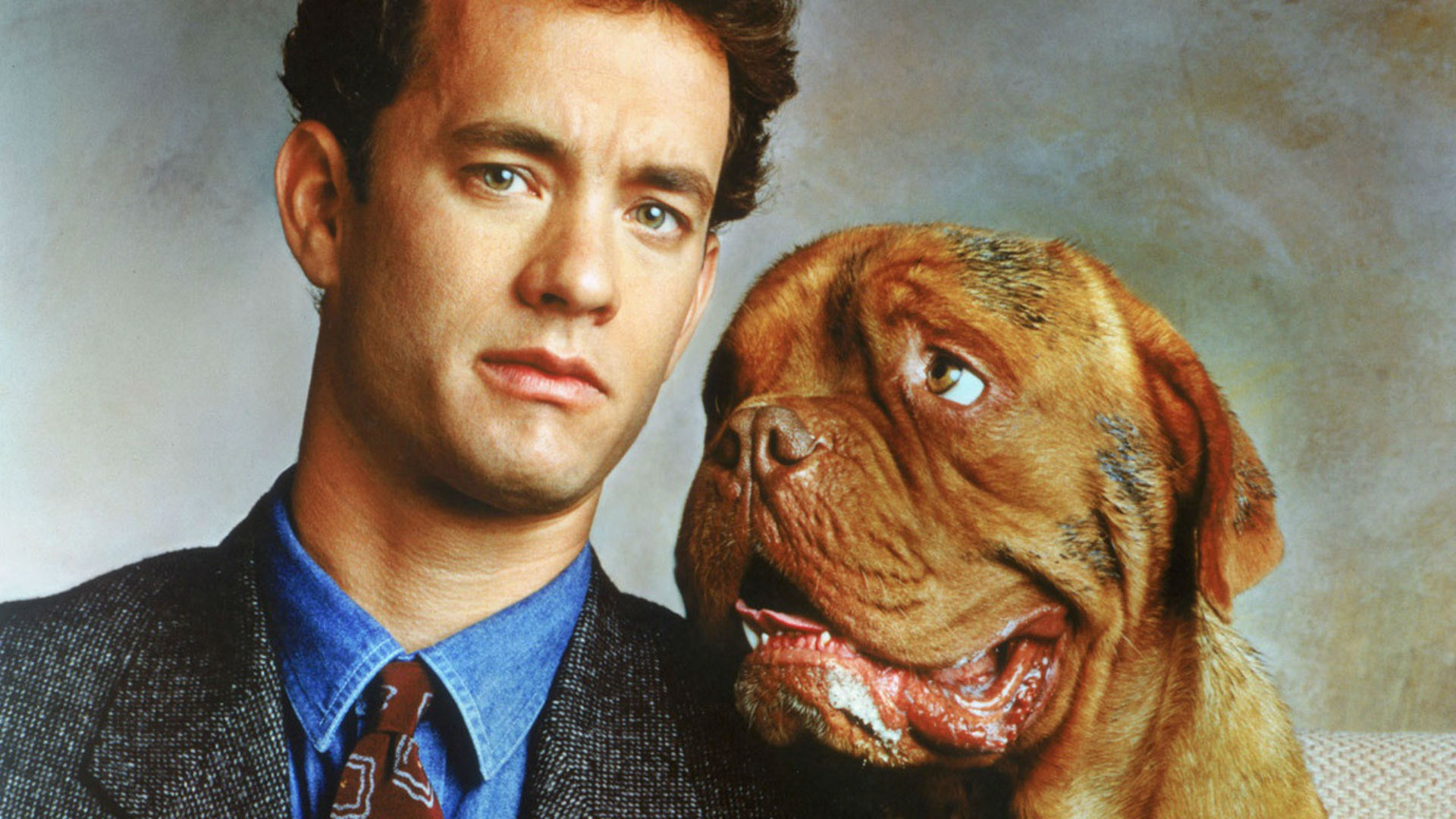 Turner and Hooch Tom Hanks dog