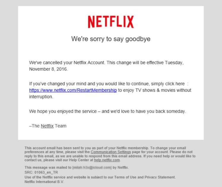 The Netflix phishing email scam.