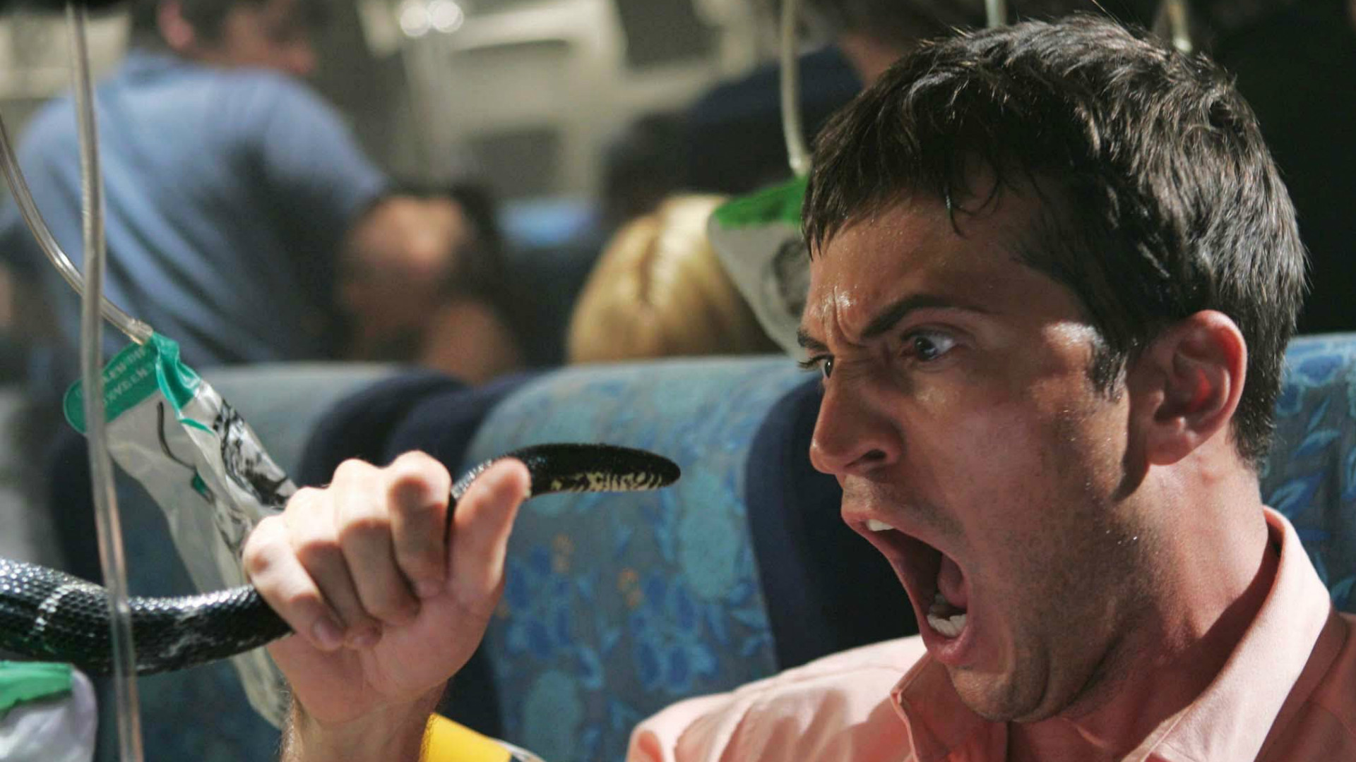 A still from Snakes On A Plane.