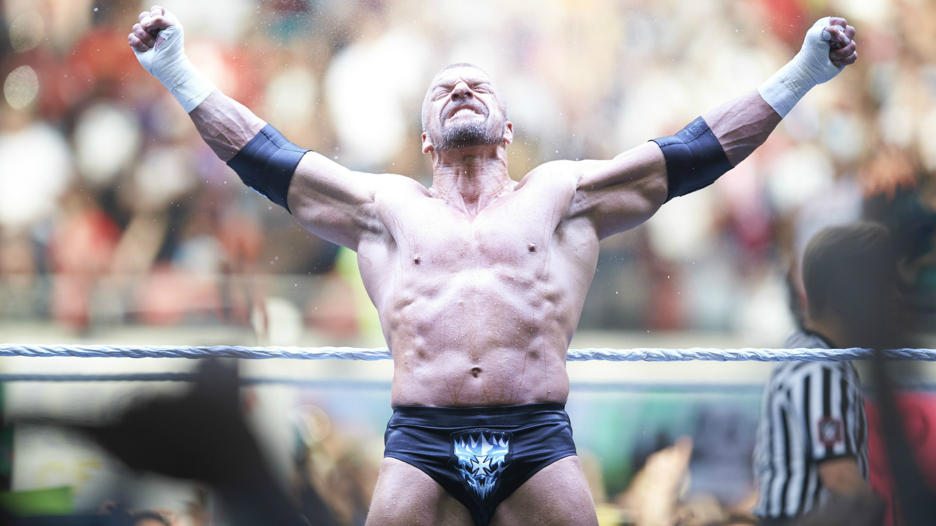 Triple H WWE wrestling star