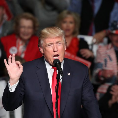 HERSHEY, PA - DECEMBER 15: US President-elect Donald Trump speaks to supporters during a rally at the Giant Center, December 15, 2016 in Hershey, Pennsylvania. President-elect Trump has been visiting several states that he won, to thank people for their support in the US election. (Photo by Mark Wilson/Getty Images)