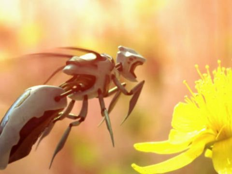 The bees from Black Mirror