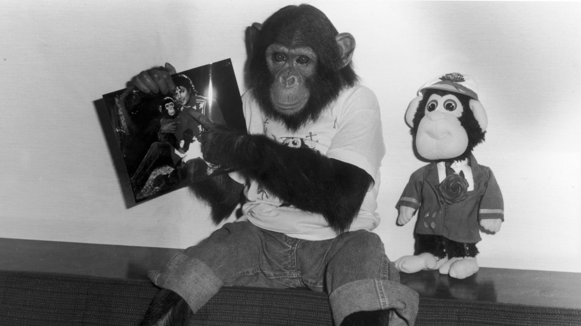 Michael Jackson's pet chimp Bubbles.