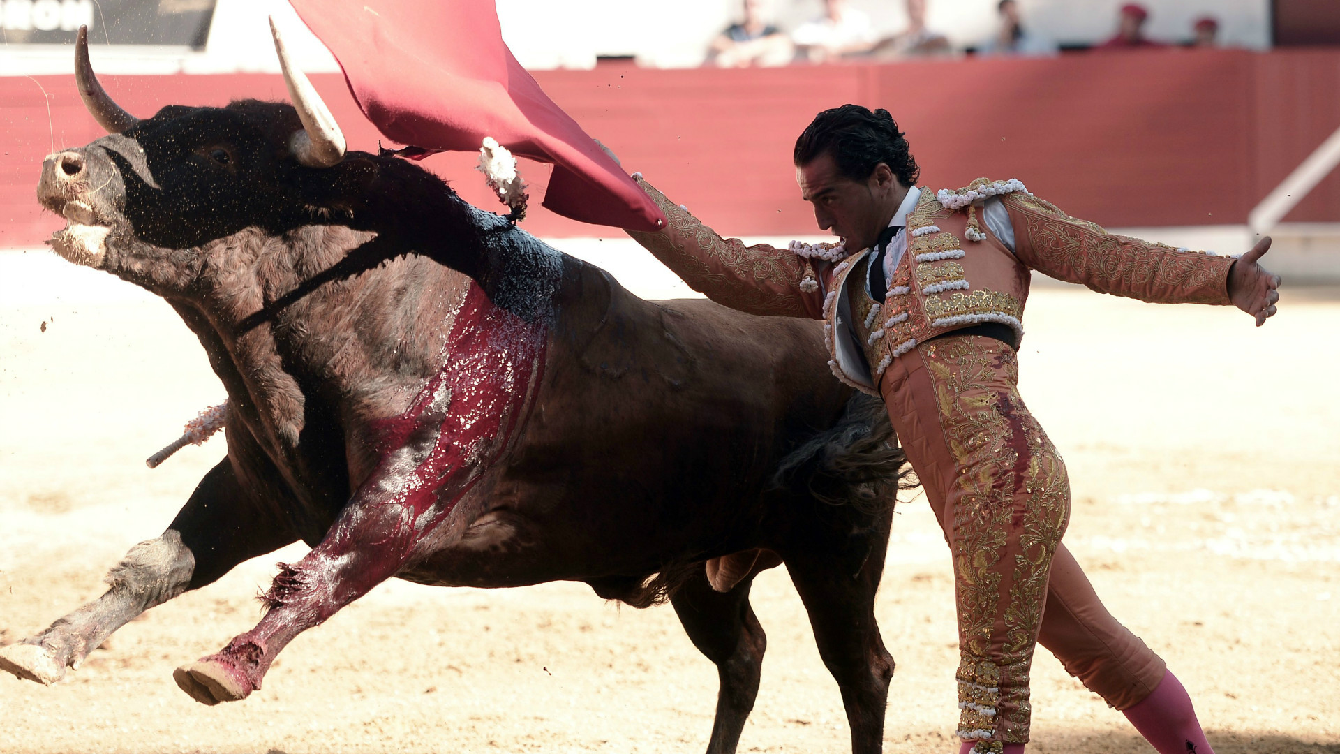The bullfighter Fandino.
