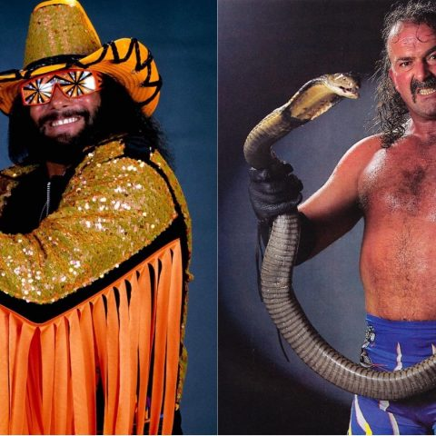 Randy Savage and Jake Roberts.