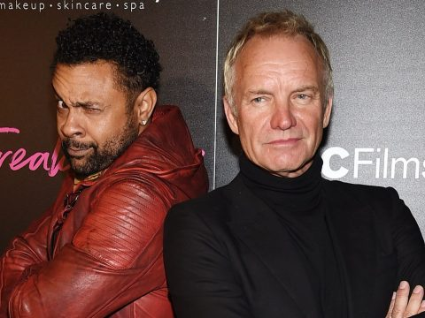 Shaggy and Sting.