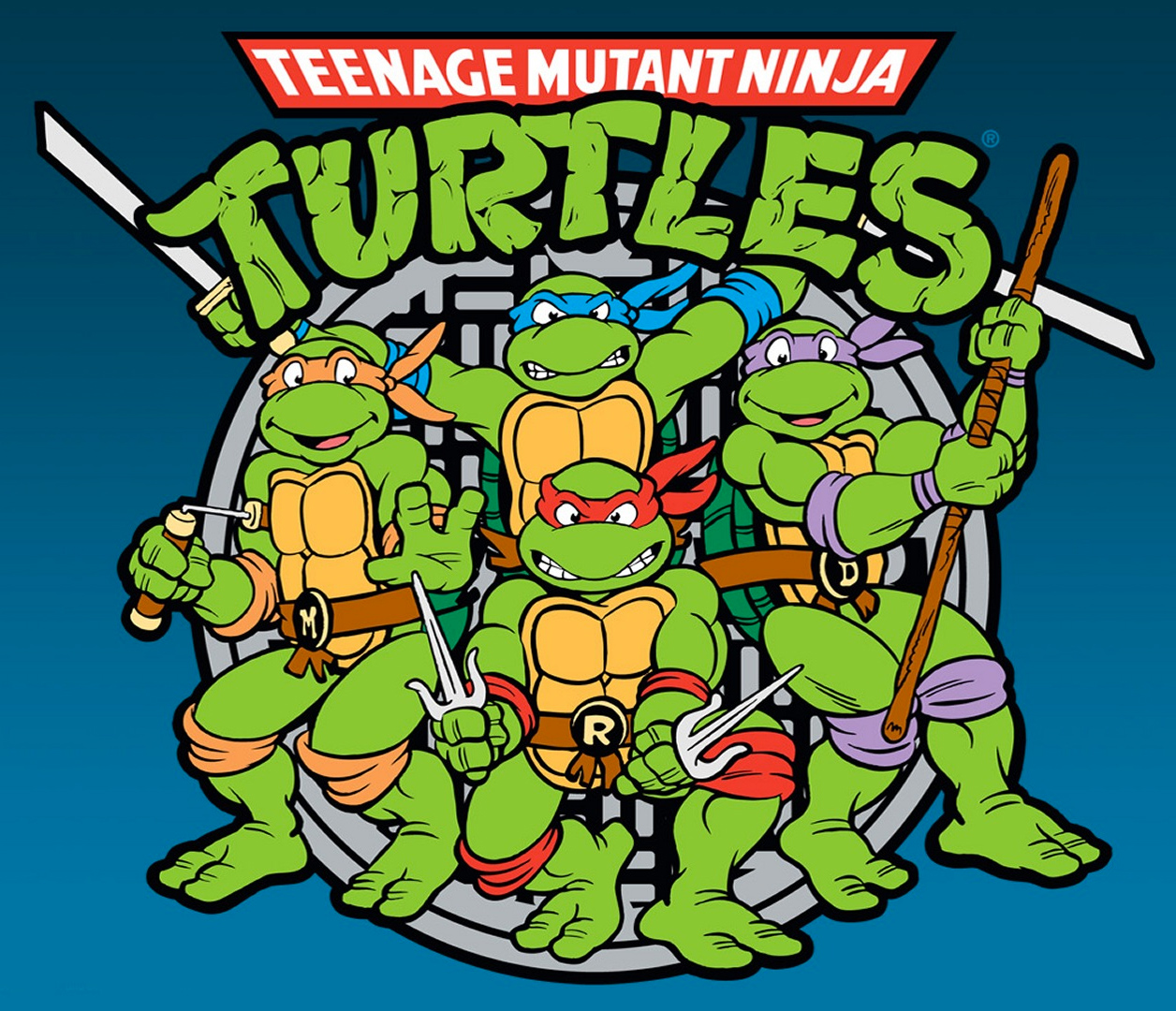 Teenage mutant ninja turtles the cartoon.