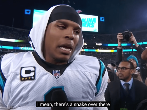 Cam Newton is spoofed in the Bad Lip Reading NFL 2015 roundup – Loaded