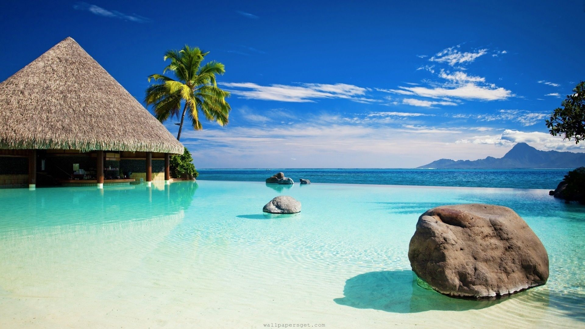 A picture of an exotic island.