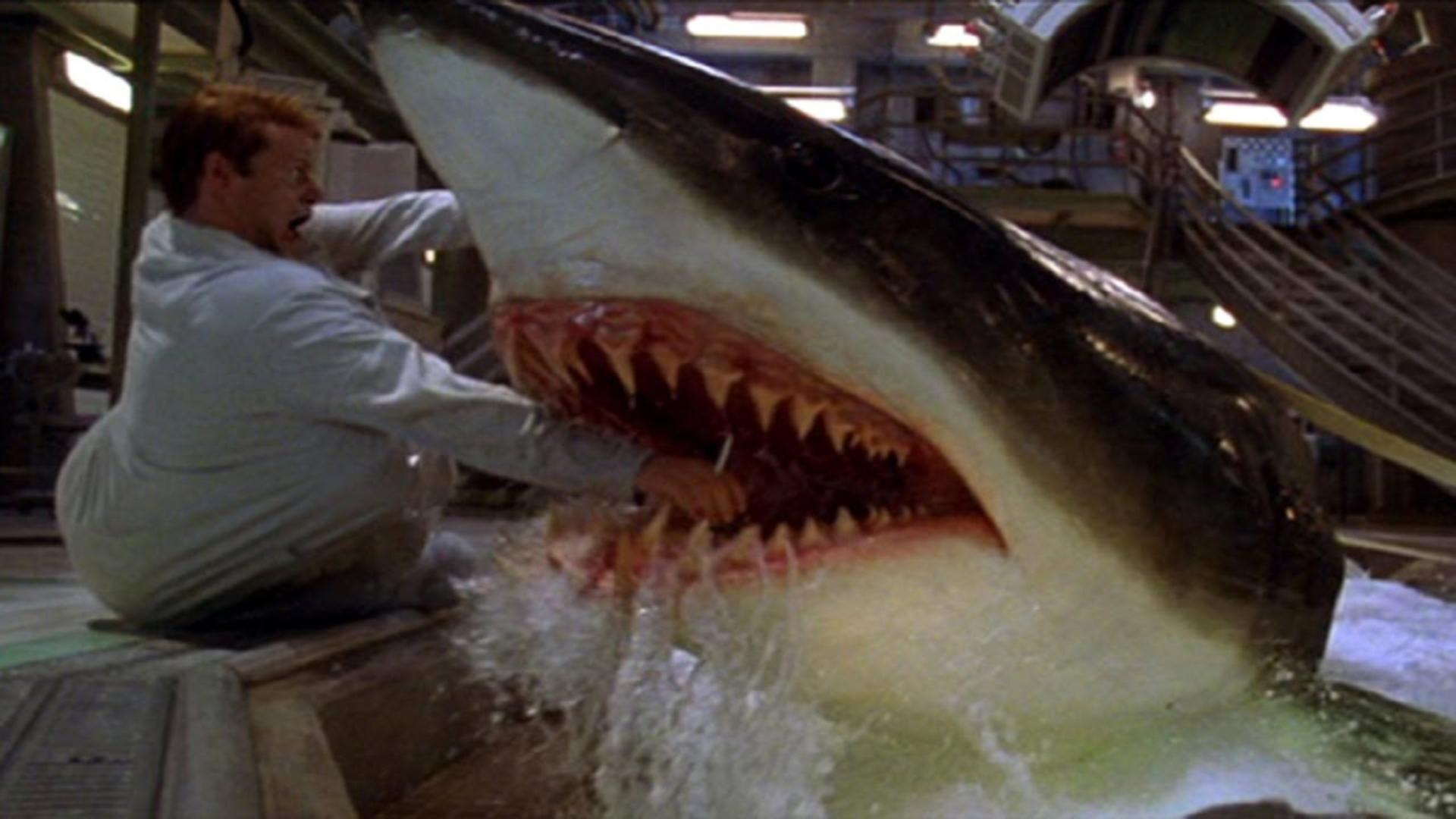 A still from the movie Deep Blue Sea