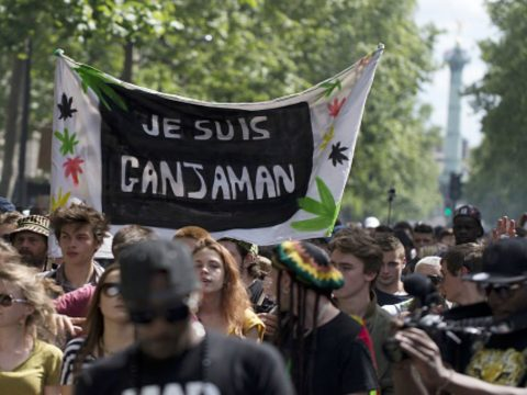 france weed