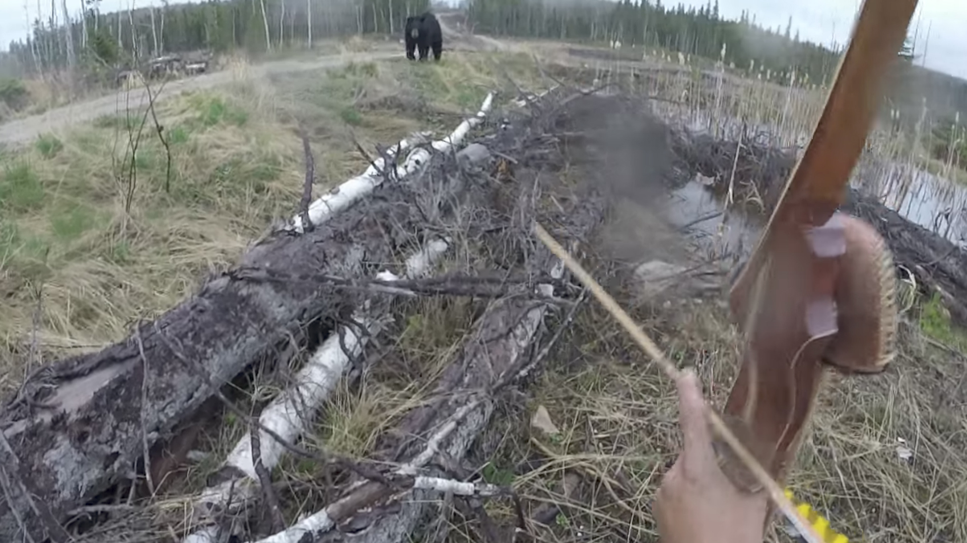 Bow and arrow hunter attacked by a bear