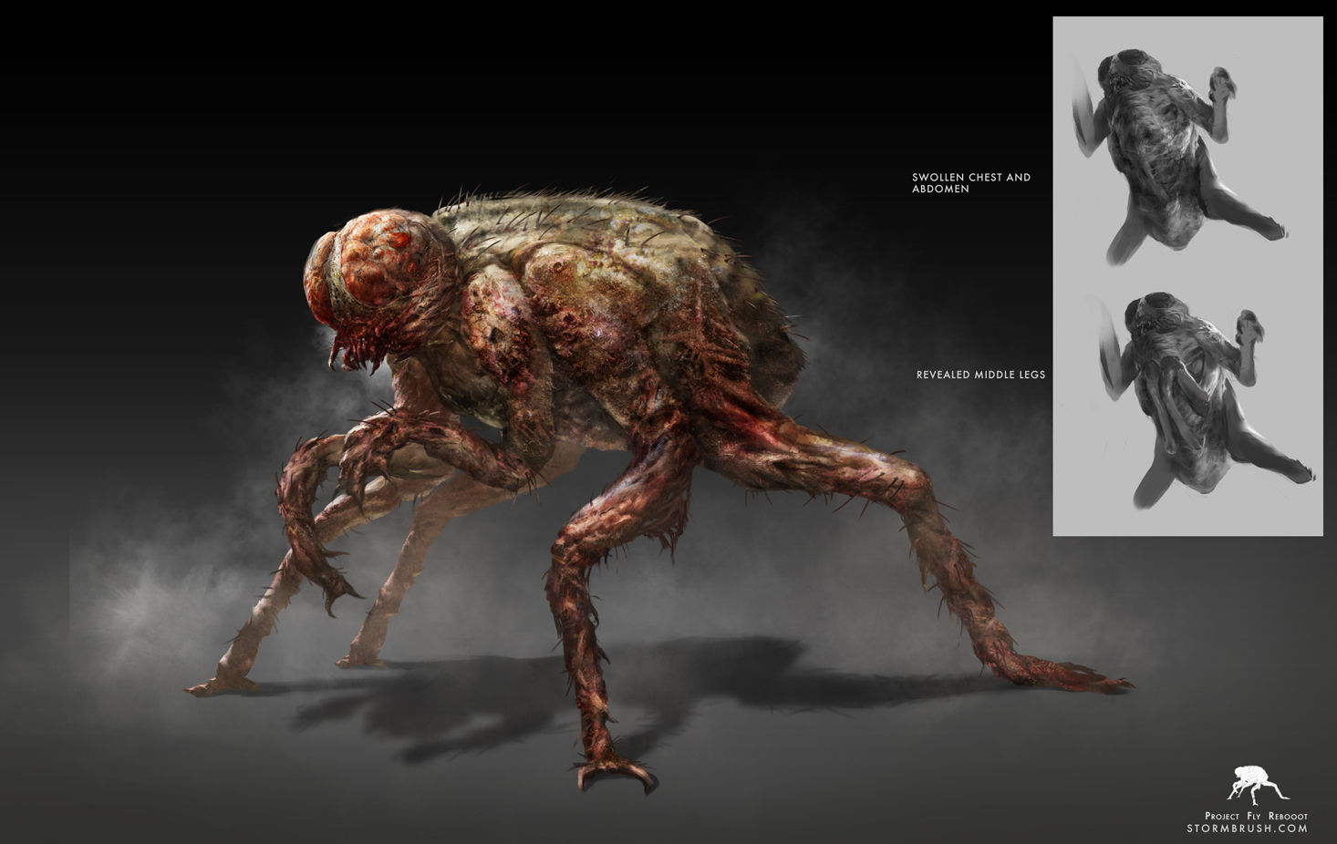 Stormbrush's concept art for The Fly.