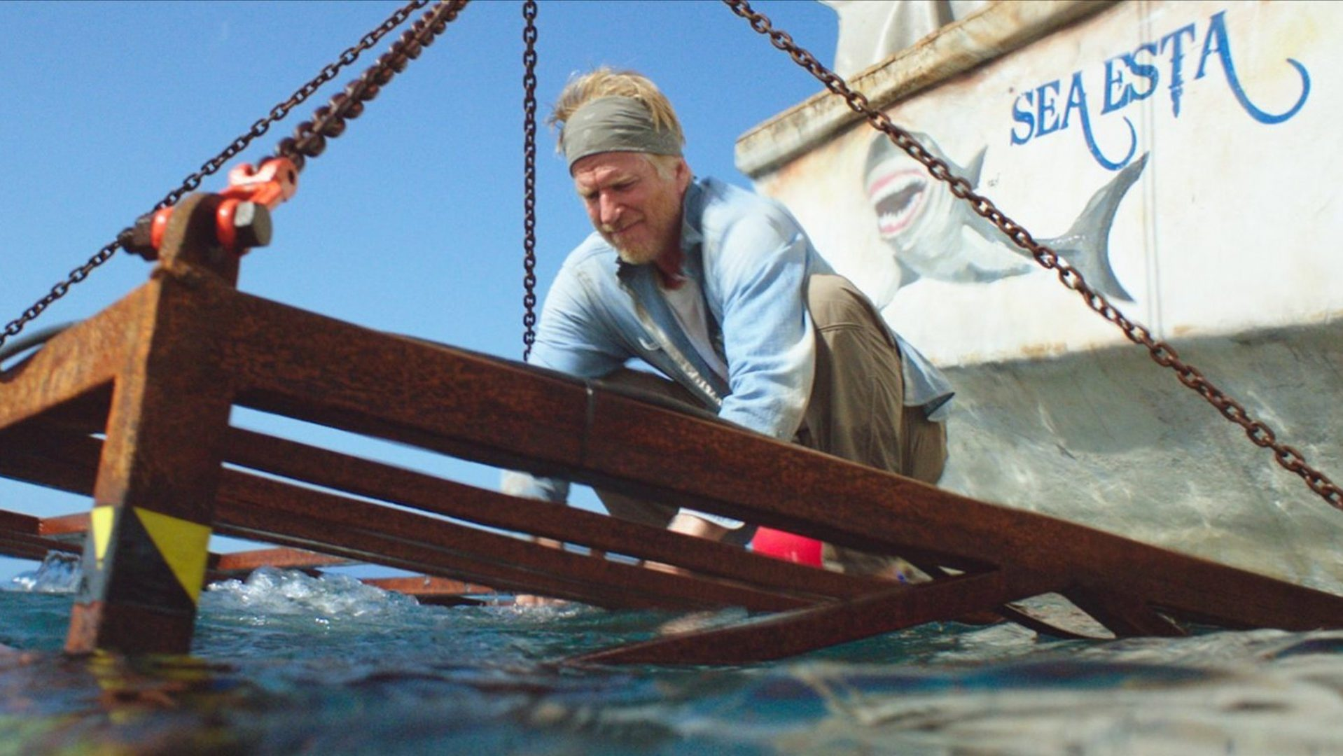 Matthew Modine in 47 Metres Down.