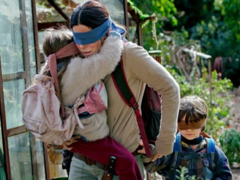 Netflix issue health warning over 'Bird Box challenge' after alarming baby footage emerges.